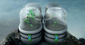 Bio-replicator pod