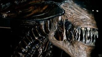 ALIEN 4 Queen Building the Queen ALIEN RESURRECTION