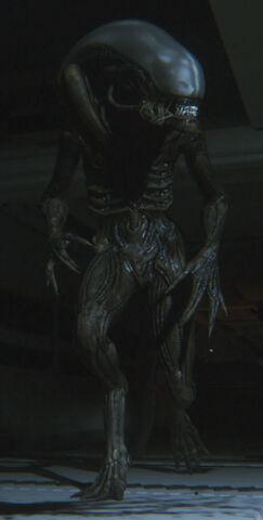 File:Sevastopol Alien.jpg