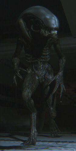 Sevastopol Alien