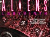 Aliens: Labyrinth (novel)