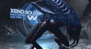 Xeno Soldier