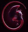 William Gibson Alien 3 unlettered
