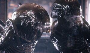Cloned aliens