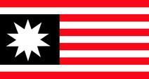 Flag of United Americas