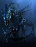 Xenomorph Queen