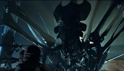 Queen Aliens