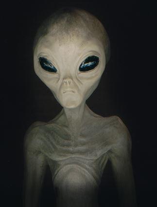 Image Alienrealjpg Alien Wiki FANDOM powered by Wikia