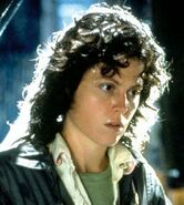 Ripley-profile