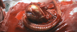 Alien-The Chestburster