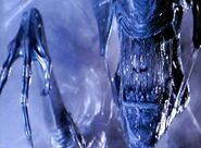 Alien queen pic1