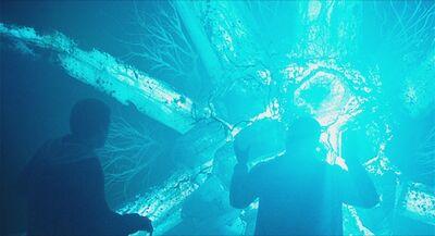 Crystalline Entity (Chronicle)