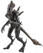 RavenXenomorph