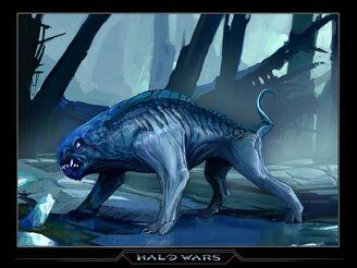 Halo wolf