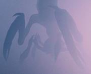 Mist Mantis-Lobster
