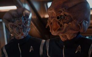 StarfleetInsectoids
