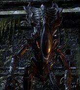 PraetorianXenomorph