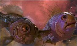 CosmicFish