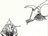 Ricochetal Saltator