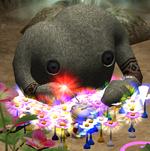 Mamuta's Garden