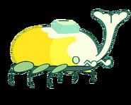 Heaven Beetle