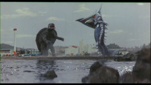Gamera clashes once again with Zigra.