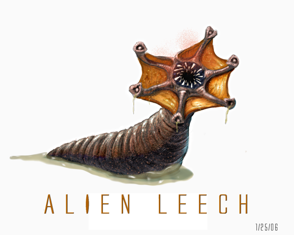 leech alien species fandom powered by wikia