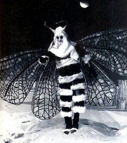 Menoptera1
