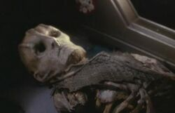 Cardassian skeleton