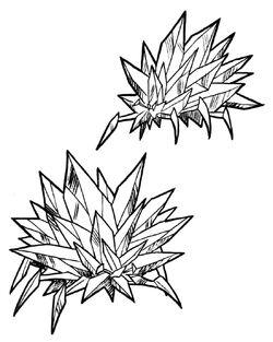 Crystal Barnacle