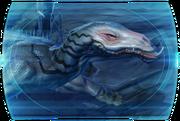 Sleen TOR Codex