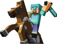 Steve riding Horse
