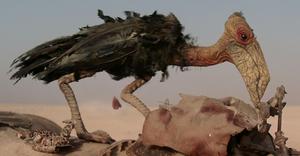 Steelpecker in Episode VII