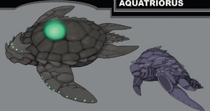 Aquatriorus