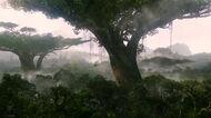 PandoranRainforest