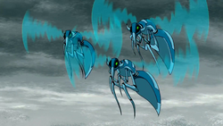 Voliticus Biopsis1