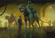 Aaron-mcbride-150203-horsehound-02-amcb