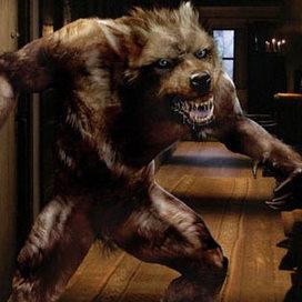 Wolf_doctor_who.jpg