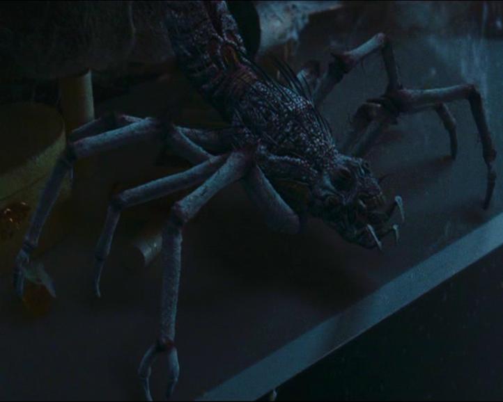 Creatures Of The Mist Alien Species Fandom Powered By Wikia