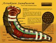 Sandworm