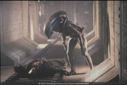 Alien 3 2013 XenoFox