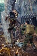 Predators3-thumb-330x495-41065