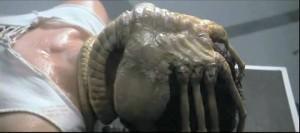 300px-Alien facehugger