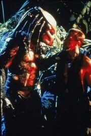 Caçador selva 2