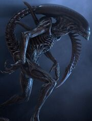 Alien zangão 2