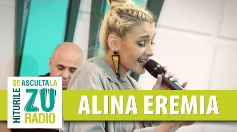 Alina Eremia - Work