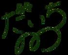 Nono Daichi Autograph