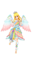 Img star festival coord