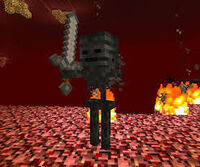 Wither nether 2