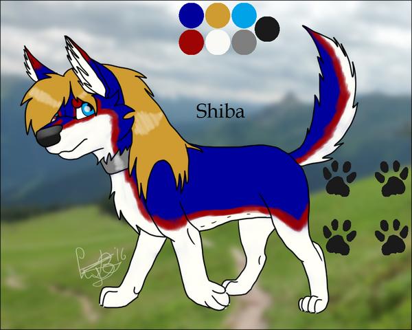 File:Shiba.png
